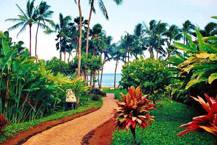 Hawaiian Pathway - Richard W. Jenkins Gallery