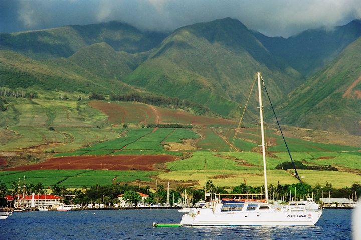 Maui Hillside - Richard W. Jenkins Gallery