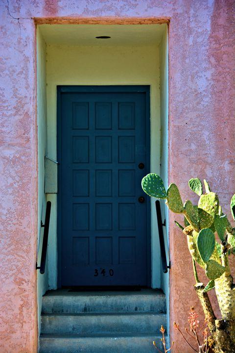 Cactus And Blue Door - Richard W. Jenkins Gallery