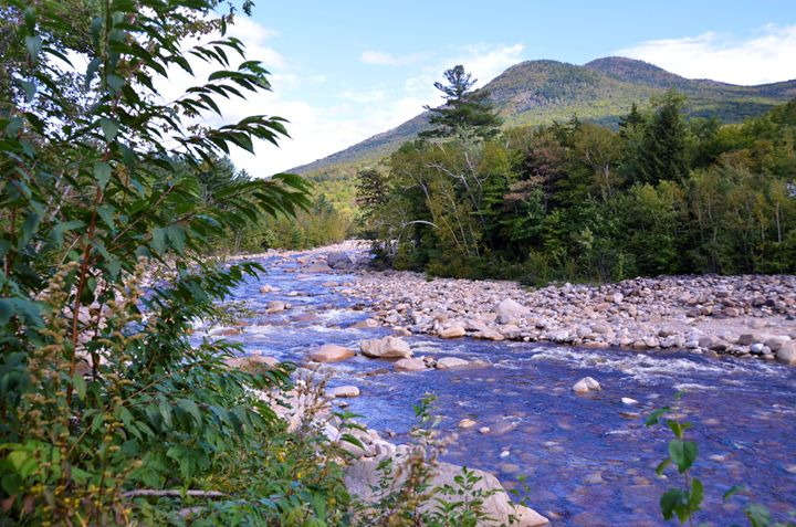 River In New Hampshire - Richard W. Jenkins Gallery