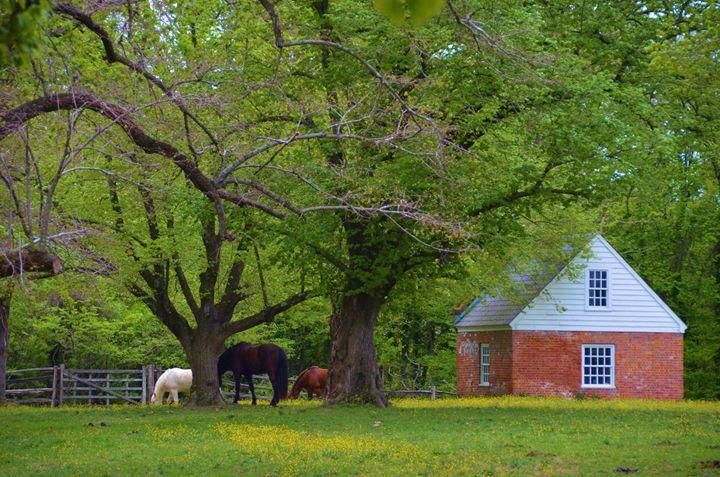 Farm in Williamsburg - Richard W. Jenkins Gallery