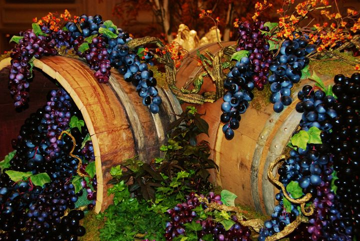 Grapes and Barrells - Richard W. Jenkins Gallery