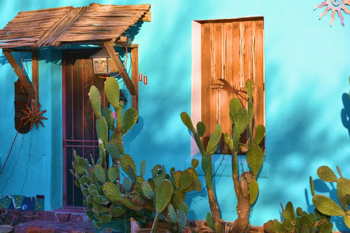 Csctus wood windows doors Adobe - Richard W. Jenkins Gallery