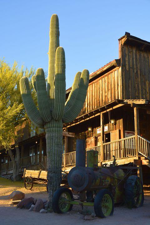 Saguaro and Steam Engine - Richard W. Jenkins Gallery