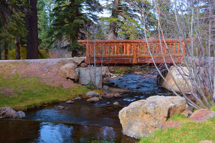 Bridge At Greer - Richard W. Jenkins Gallery