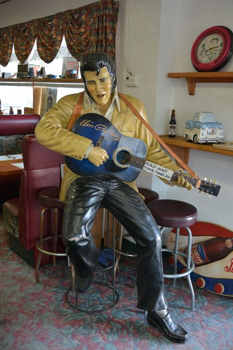 Elvis - Richard W. Jenkins Gallery