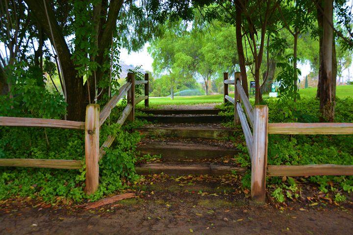 Steps To Golf - Richard W. Jenkins Gallery