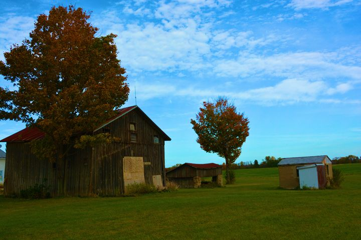 Old Barn and Shack - Richard W. Jenkins Gallery