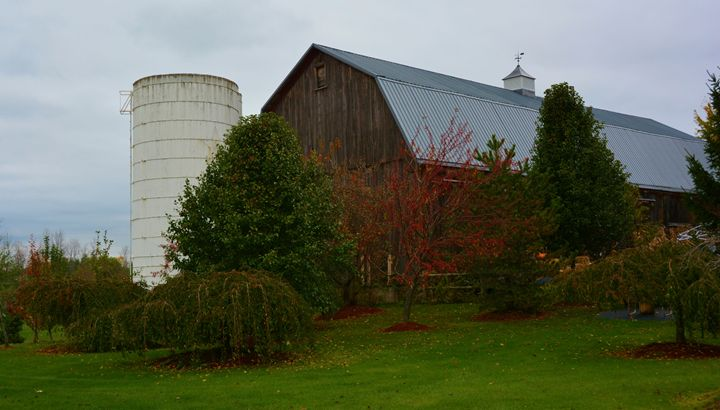 Historic Barn and Silo - Richard W. Jenkins Gallery