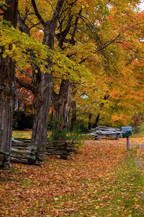 Autumn in Northeast - Richard W. Jenkins Gallery