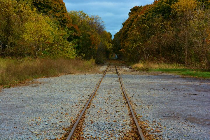 Tracks leading to Fall - Richard W. Jenkins Gallery