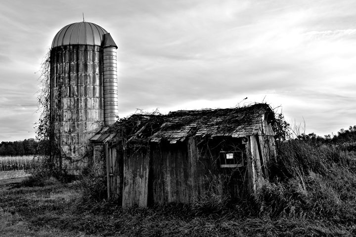 Silo and Shed Black and White - Richard W. Jenkins Gallery