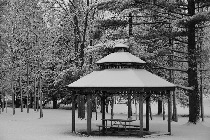 Blaack and White Winter - Richard W. Jenkins Gallery