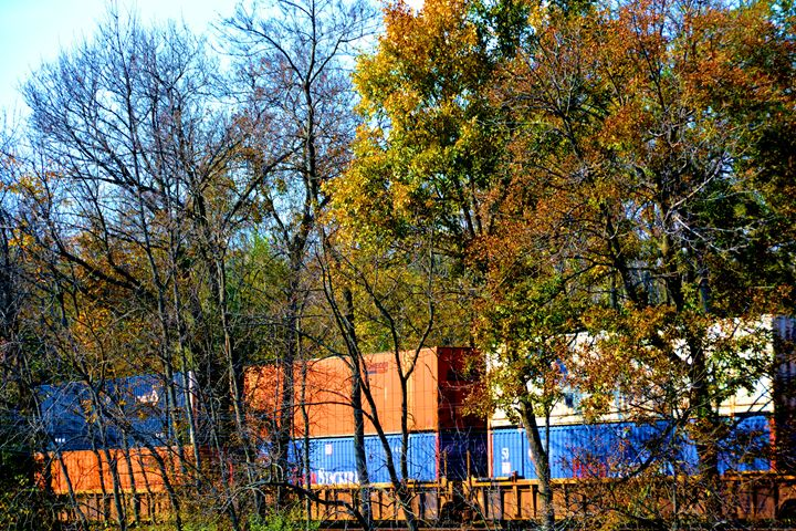Box Cars in the Woods - Richard W. Jenkins Gallery
