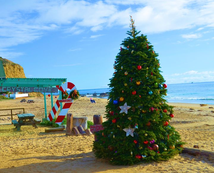 Christmas on the Beach - Richard W. Jenkins Gallery