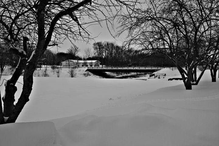 Back Creek Frozen - Richard W. Jenkins Gallery