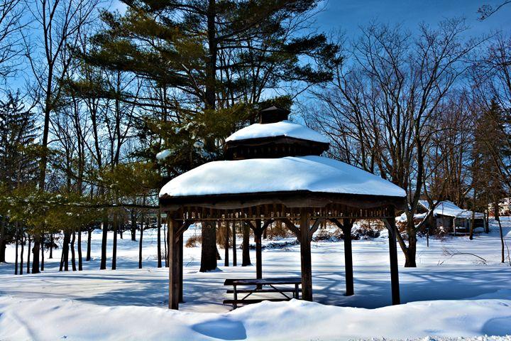 Gabezo in the Snow - Richard W. Jenkins Gallery