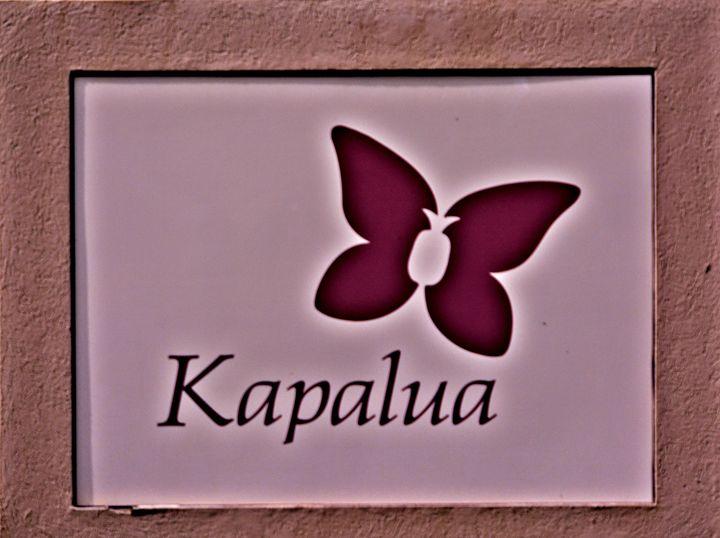 Kapalua Maui - Richard W. Jenkins Gallery