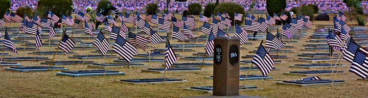 Veterans Cemetery and Flags - Richard W. Jenkins Gallery