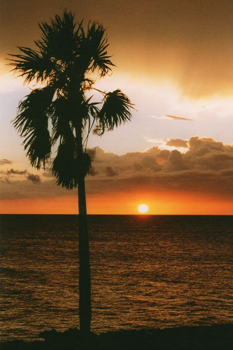 Sunset in Cuba - Carlos' Art Works