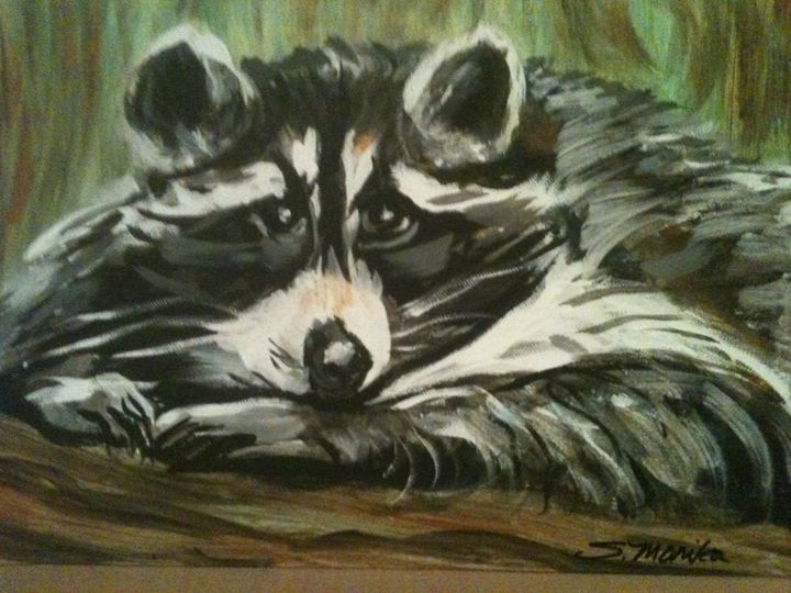 rocky raccoon - Krazy Kanvas by Susan Monika