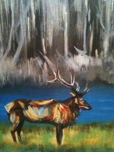 Elk in woods