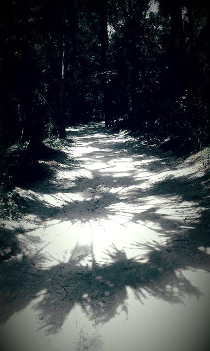 path - ModernArt