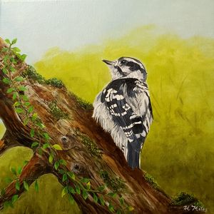 First Steps ( Baby woodpecker ) - Al Matos Fine Art