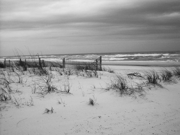 Coast BW - Shaleaux Fine Art & Design