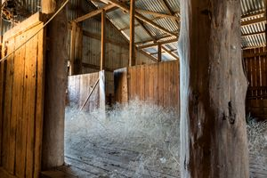 Abandoned Sheep Shearing Shed - Transchroma Photography