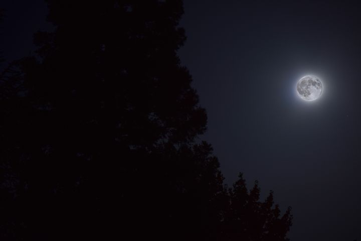 8/29/15 Full Moon - Charlie Quanstrom Photography