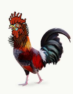 Traditional Rooster Face