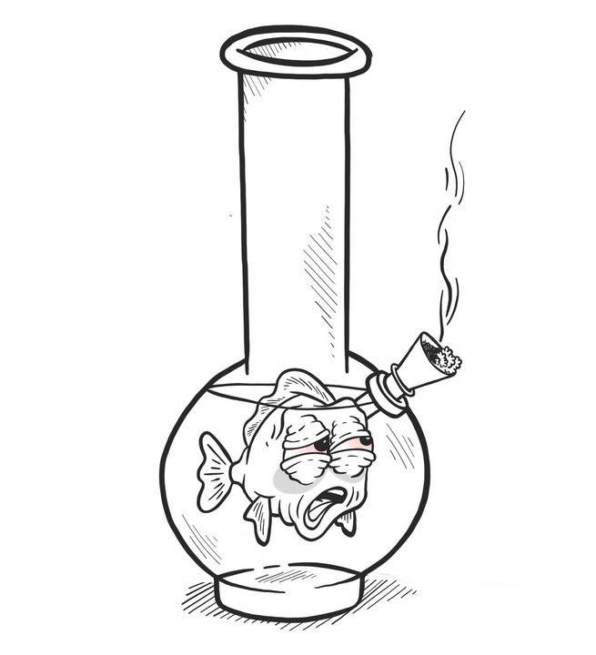 Bong Fish - Tyler Genovese Art