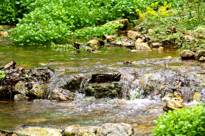 Rocks in the stream bed - Kate's Photography
