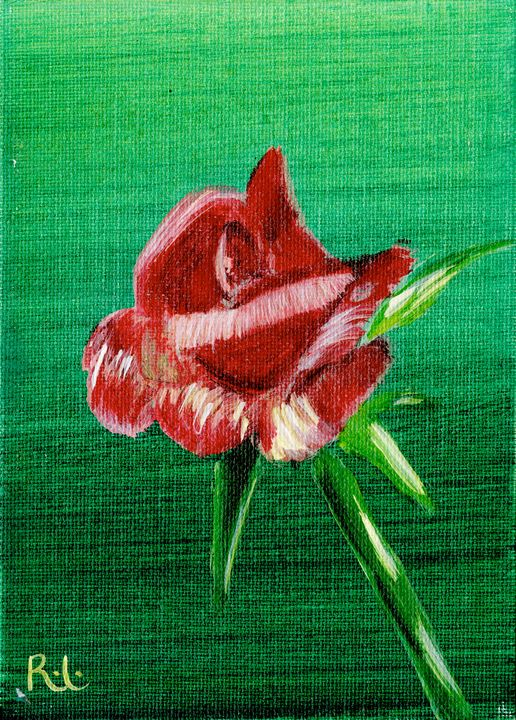 Small Rose - Rolo