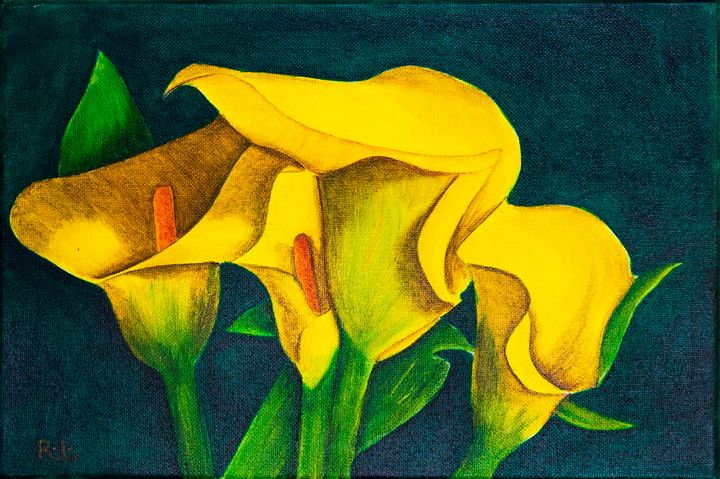 Yellow Bells - Rolo