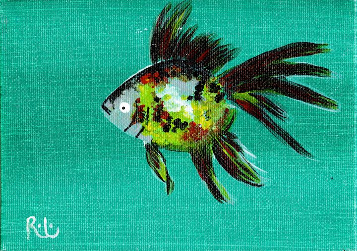 Small Fish - Rolo
