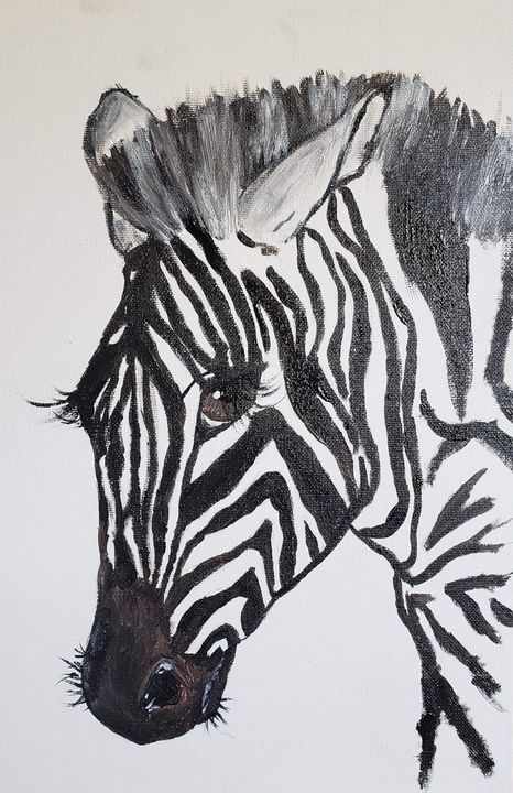 Zebra - Crystal Stark Photography & Arts