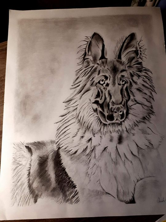 German Shepherd - Oneisha's Artworld