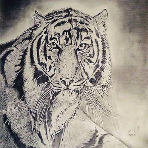 Tigress at Heart - Oneisha's Artworld