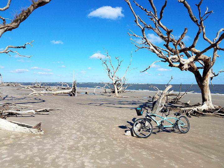 Biking On Driftwood Beach - David McCune Jr