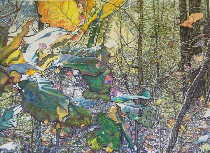 Autumn Woods - Diane S Miles Studio