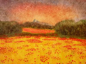 """Poppies near Ansouis"""
