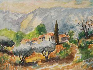 Olive trees near Maubec.