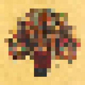 Africa Fever - Tuyp Tran