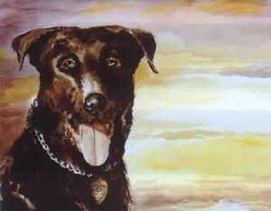 K-9 Hero, Police Dog