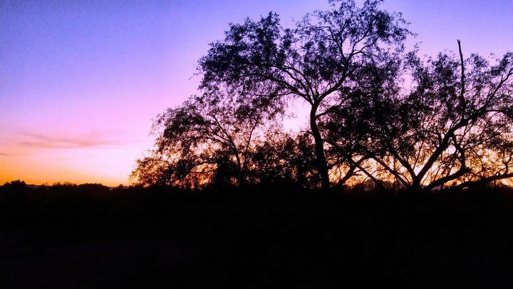 Purple Sunset - John Wortman