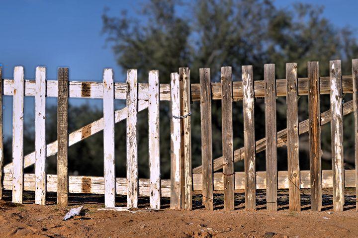 Fenced Out - John Wortman