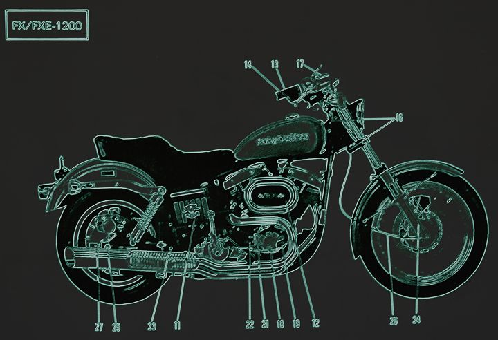 Harley Davidson V - Ethereal Organics...diane montana jansson