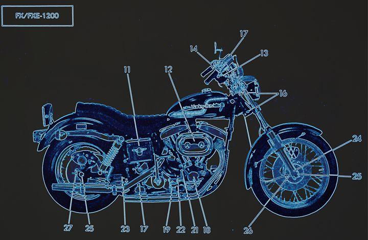Harley Davidson VII - Ethereal Organics...diane montana jansson